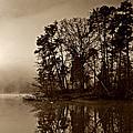 Fall On Melton Hill Lake V by Douglas Stucky