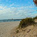 Fall On The Beach by Harold Hopkins