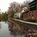 Fall On The Canal by Christopher Plummer