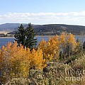 Fall On The Lake by Crystal Miller