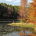 Fall On The Lake by Lynn Cromer