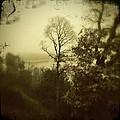 Fall On The Lake  by Steve Wood