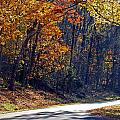 Fall On The Parkway by Skip Willits