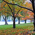 fall on the Potomac River by Jost Houk