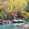 Fall On The River by Deanna Cagle