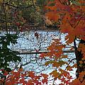 Fall On The Shetucket by Geoffrey McLean