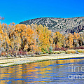 Fall On The Snake River by Robert Bales