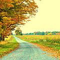 Fall Path by Caleb Filer