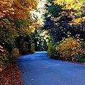 Fall Path by Matthew Farmer