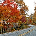 Fall Peak Along Slick Fisher Road by Duane McCullough