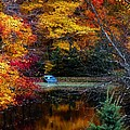 Fall Pond And Boat by Tom Mc Nemar