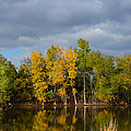 Fall Pond Reflection by Gale Cochran-Smith