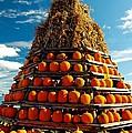 Fall Pumpkins by Kathleen Struckle