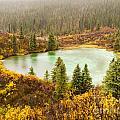 Fall Rain On Wilderness Lake Yukon T Canada by Stephan Pietzko