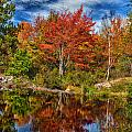 Fall Reflections In Maine Img 6312 by Greg Kluempers