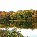 Fall Reflections by Ken Kobe