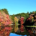 Fall Reflections by Lisa Kilby