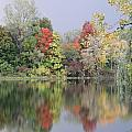 Fall Reflections by Mike Dickie