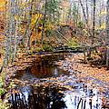 Fall River by Mark Hudon