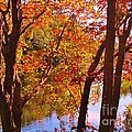 Fall River Nova Scotia by John Malone