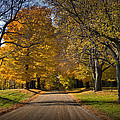 Fall Rural Country Gravel Road by Randall Nyhof