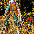 Fall Scarecrow by Kenny Francis