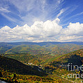 Fall Scene From North Fork Mountain by Dan Friend