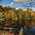 Fall Scene by Richard Kitchen