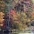 Fall Shoreline by Rhonda Burger