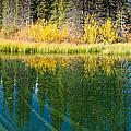 Fall Sky Mirrored On Calm Clear Taiga Wetland Pond by Stephan Pietzko