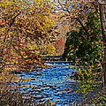 Fall Stream by Tom Gari Gallery-Three-Photography