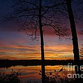 Fall Sunset by Jacqueline Athmann