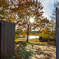 Fall Through The Gate by Kirkodd Photography Of New England