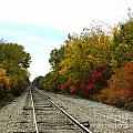 Fall Tracks by Tisha Clinkenbeard