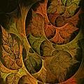 Fall Transitions by Doug Morgan