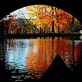 Fall Under The Bridge by Tanya Hamell