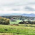 Fall Vermont Landscape by Deborah Benoit