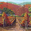 Fall Vineyard by Yenni Harrison