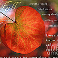 Fall Words And Colors by Lisa Redfern
