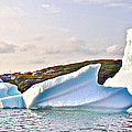 Fallen Clouds Icebergs In Saint Anthony Bay-newfoundland-canada  by Ruth Hager