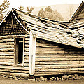 Fallen Homestead II by Athena Mckinzie