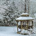 Falling Snow - Winter Landscape by Barry Jones