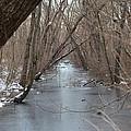 Falling Trees On A Frozen Canal by Bill Helman