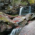Falling Water Meets Fallen Leaves by Gene Walls
