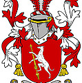 Fallon Coat Of Arms Irish by Heraldry