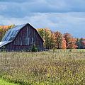Fall's Beauty by Linda Kerkau