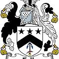 Falls Coat Of Arms Irish by Heraldry