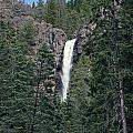 Falls Creek by Shirley Roberson