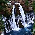 Falls by Lillian Singer