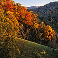 Fall's Mountainside Cascade by Lynn Bauer